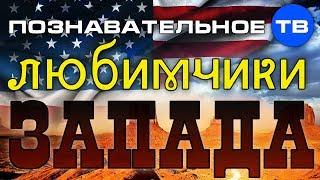 Любимчики Запада (Познавательное ТВ, Николай Стариков)