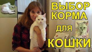 Заказ сухого корма для кошек, Обзор кошачьих кормов, Советы кошатника(, 2016-11-06T17:00:01.000Z)