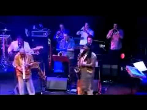 Manu Dibango -Live concert