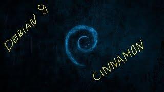 linux Debian Cinnamon  ( обзор операционной системы )