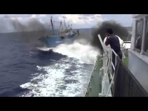 Japan, China ship collision fuel tensions 2