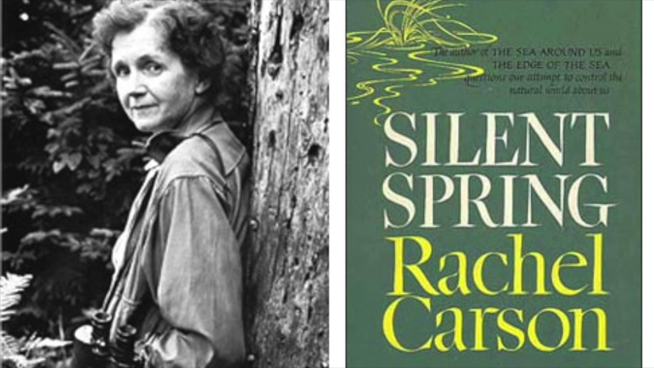 silent spring rachel carson 1 Lesson 1 silent spring, by rachel carson, alerted the world to the dangers of icide use described by carson can occur in any suggested level(s): grades 9-12.