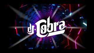 DJ COBRA MIX 2017 PERREO MIX SOLO PARA PERREADORES