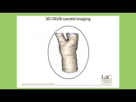 Contrast Enhanced Ultrasound