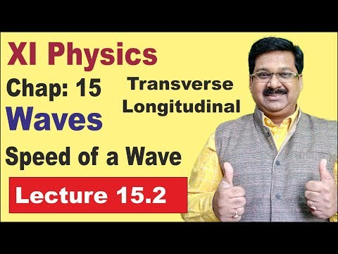 NCERT XI Physics Chap-15.2 | Speed of a Wave | Waves |