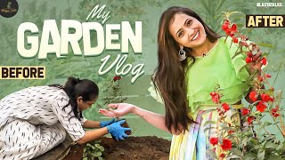 My Garden Vlog |  Vegetables | Flowers | Organic Gardening | Lasya Manjunath | Lasya Talks