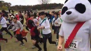 2015年11月29日に開催された「第27回スイーツマラソンin愛知」スタート...