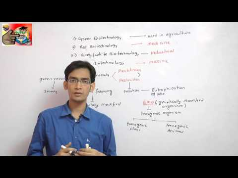 Application of Biotechnology Part 1
