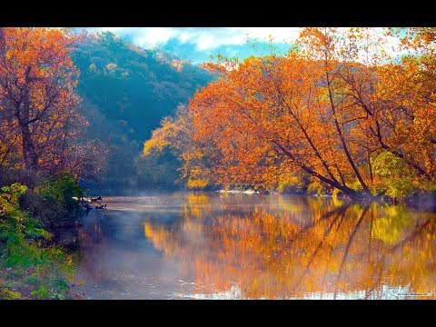 Beautiful Nature 24/7 Live Stream Relaxing Sound No Music ASMR - Relax/Sleep/Study