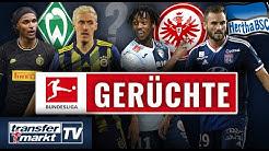 Transfers für Werder, Frankfurt & Co.? Diese Bundesliga-Klubs müssen noch was tun | TRANSFERMARKT