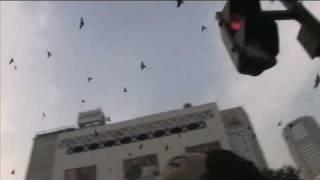 映画『オカルト』(2008) — 見てはいけない、地獄の映画。 — 監督 白石...
