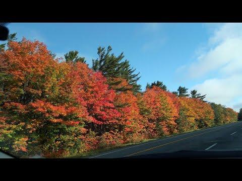 Road Trip Highway 17 , Sault Ste. Marie, Wawa (Ontario, Canada)