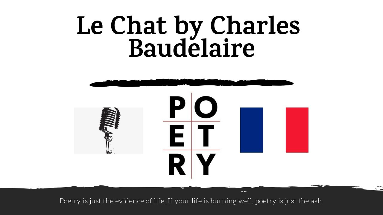 Charles Baudelaire Le Chat French Poetry Learn French