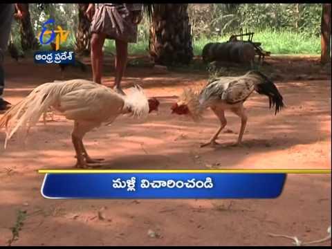 12th: Ghantaraavam 5 PM Heads  ANDHRA