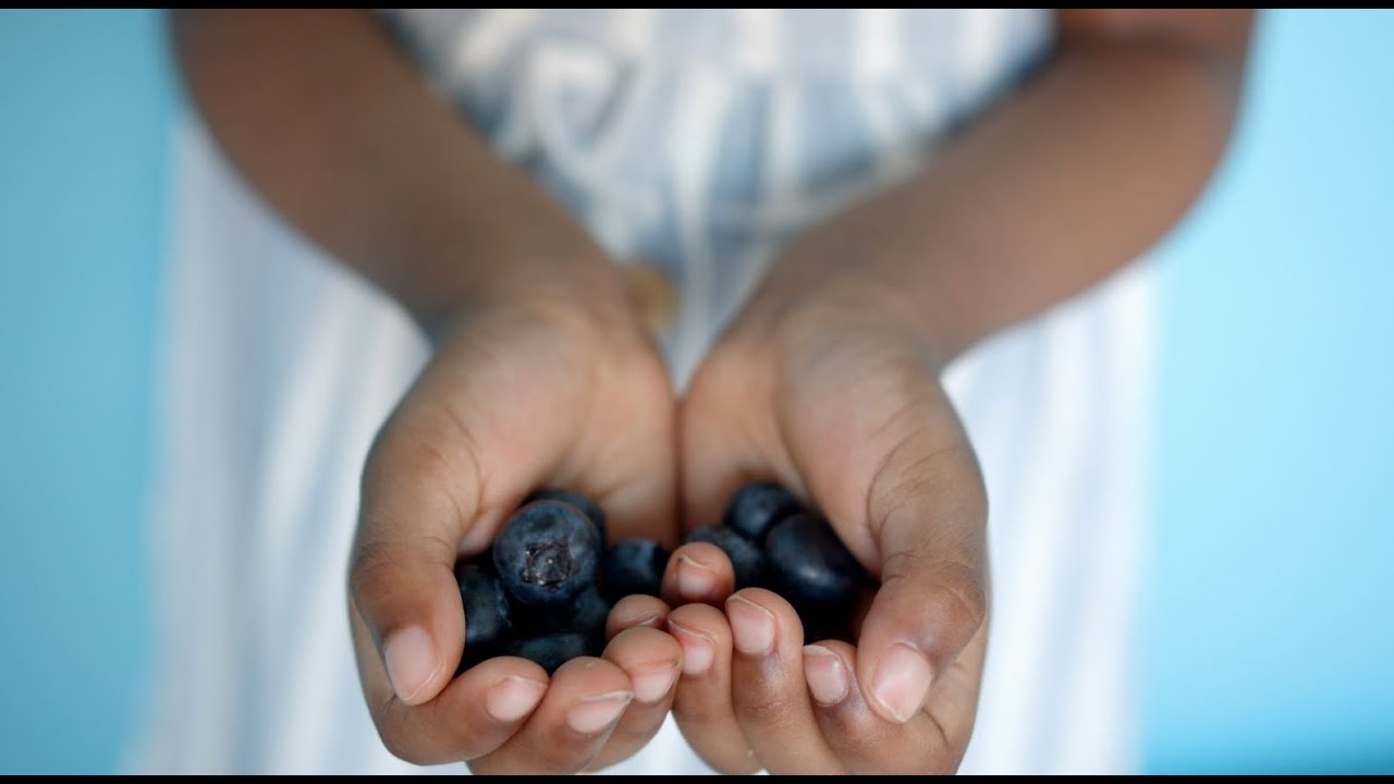 Why are organic wild Nordic blueberries so much better?