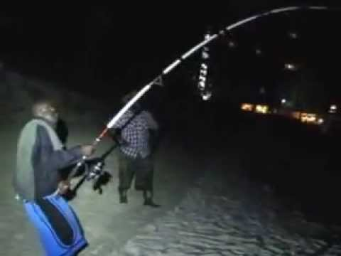 Shark Week Bahamas lands 10 foot shark Beach Fishing pt 1