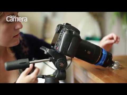 Fotografuj w ogrodzie! Jakiego sprzętu użyć do zdjęć makro