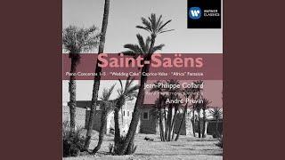 Piano Concerto No. 1 in D Major, Op. 17: I. Andante - Allegro assai