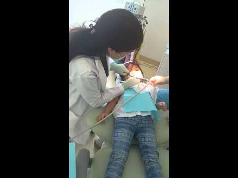 Oshka's first dental visit 10-May-2015