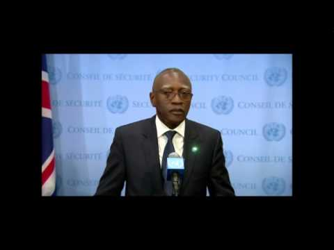 ICP Asks UN If Keeping DRC Army in CAR Despite Rapes, Child Soldiers, MONUSCO: Gaye Says Yes