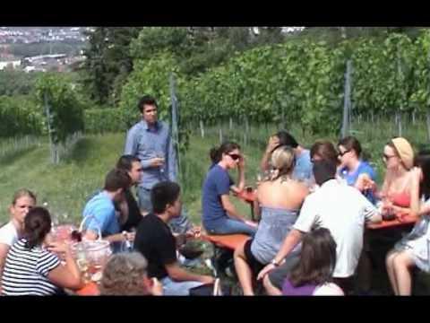 Heidelberg Summer School