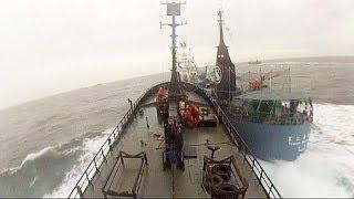 Un navire de Sea Shepherd