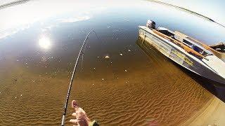 Рыбалка летом. Ловля окуня на Реке Печора. Часть 2.