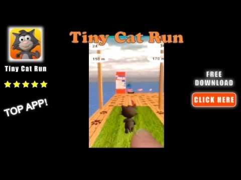 Tiny Cat Run: Running Game Fun