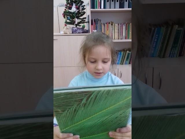 Изображение предпросмотра прочтения – АлёнаМирошниченко читает произведение «Есть в осени первоначальной» Ф.И.Тютчева