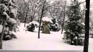 iernile in parcurile romaniei