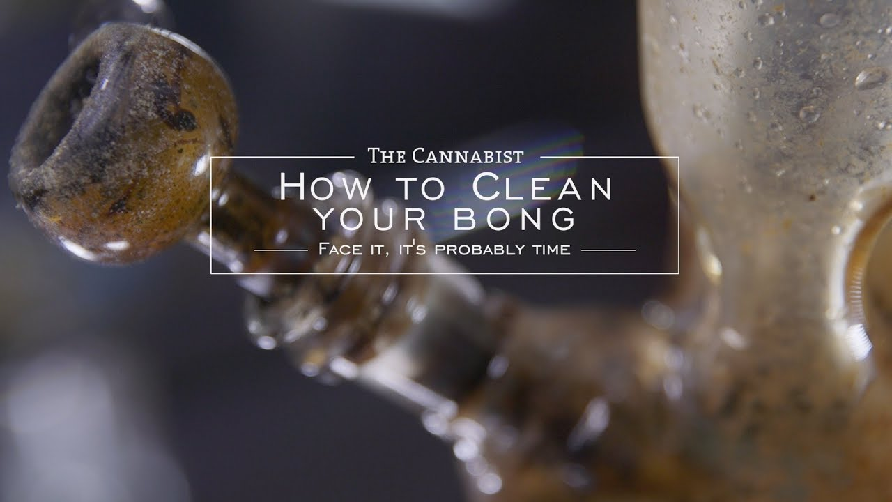 How To Clean Your Bong #1
