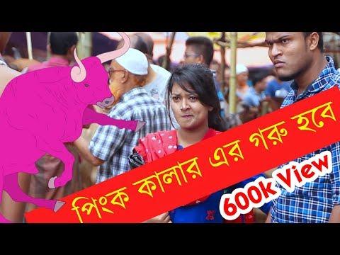 পিংক কালার এর গরু হবে ?  | Bangla New Funny Video | Bangla Fun | Mojar Tv