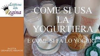 Ricetta Per Yogurt Con Yogurtiera Girmi.Come Si Usa La Yogurtiera E Come Si Fa Lo Yogurt Youtube