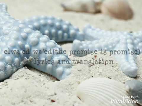 الوعد وعد مع الكلمات|elwaed waed lyrics and translation