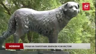 Трогательная история про одесского Хатико: собака ждал хозяина 10 лет