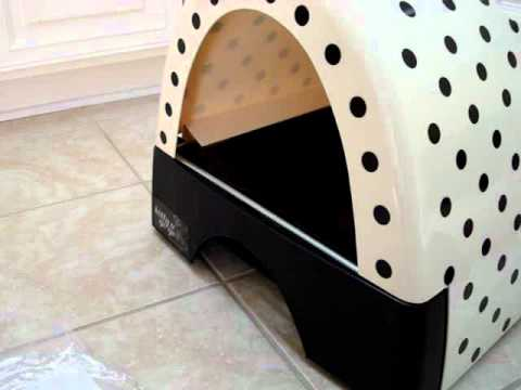 Ragdoll Cats Review Kitty a Go Go - Cat Litter Box or Beds for Cats ラグドール Floppycats