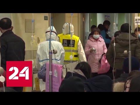 В борьбе с коронавирусом: ВОЗ готова выделить серьезные суммы - Россия 24