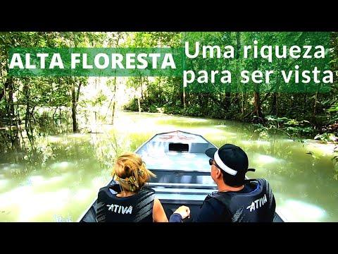 Conheça Alta Floresta, no Mato Grosso – saiba o que fazer na cidade do ouro   Turismo Aqui
