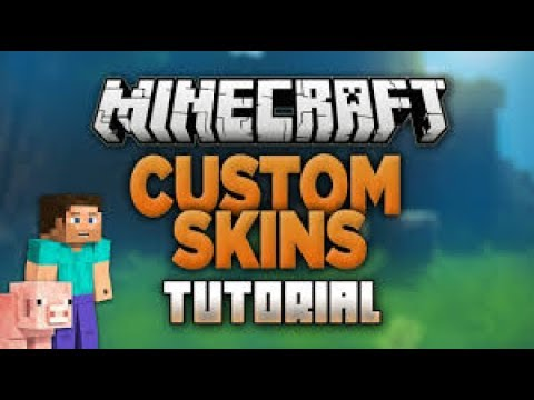 How to change your Minecraft skin! NO Bin ! NO Log In !