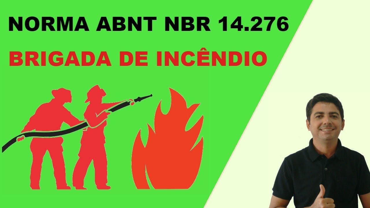 GRATUITO DOWNLOAD 14276 NBR PDF