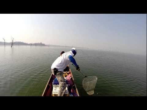 Fishing Video !!! Mama Toman Giant Snaekhead - Bkklady- Awesome !!!