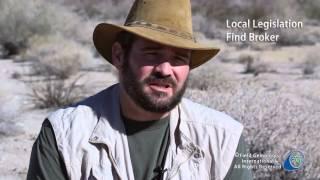 Field Gemologist Buying Tips