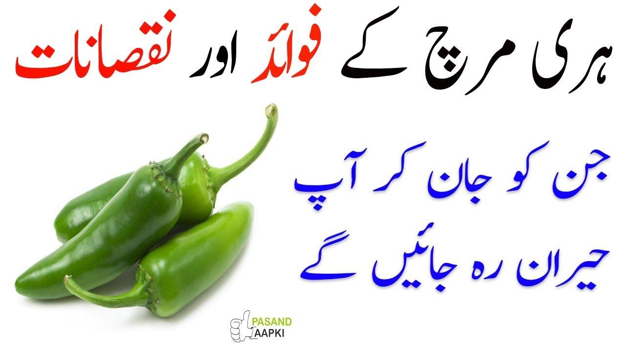 paper : green chilli : سبز مرچ ki full information with Dr Khurram:Pasand Aapki