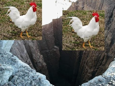 Pit cock