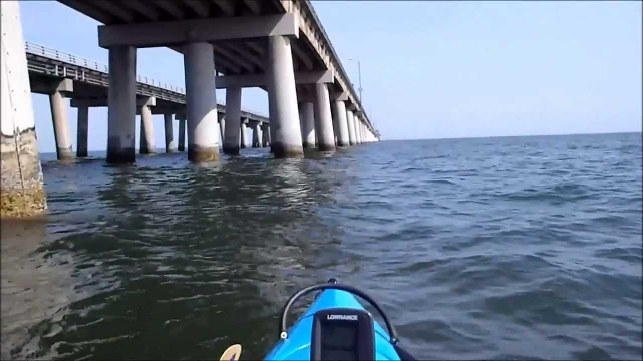 Chesapeake Bay Fishing Report 2013