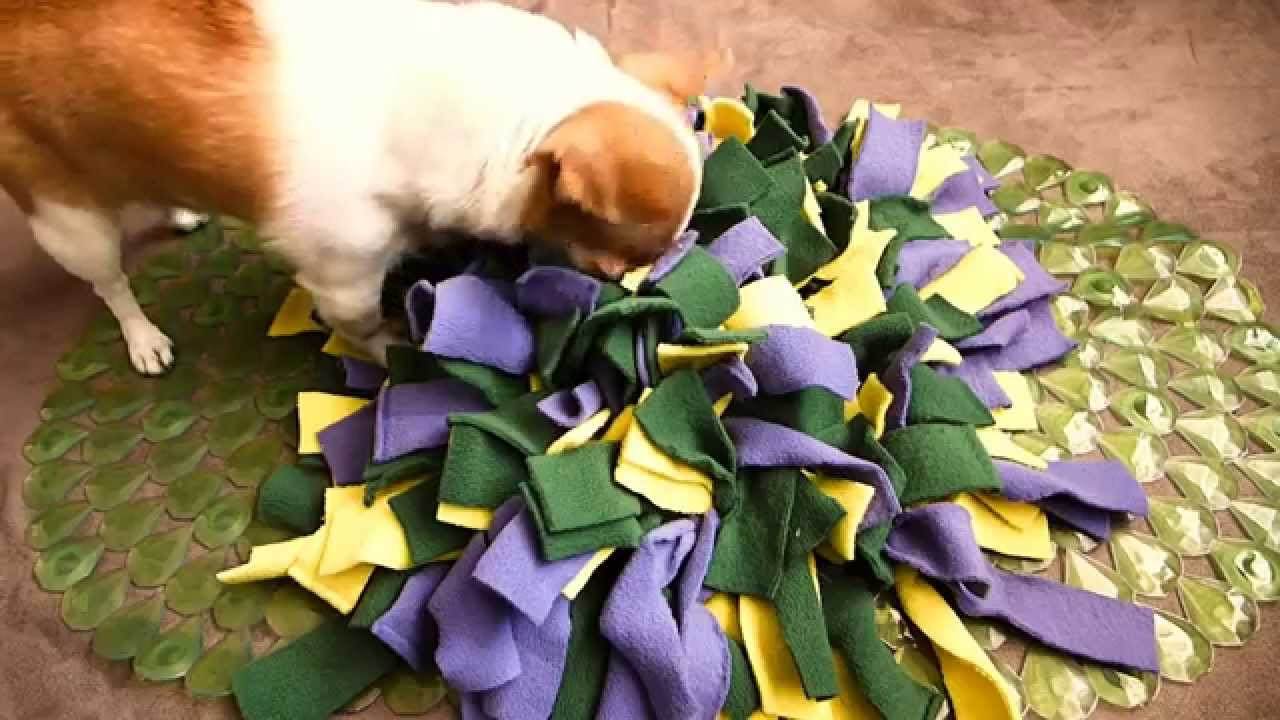 How To Make A Snuffle Mat For Your Dog Youtube
