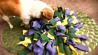 How to make a snuffle mat for your dog?