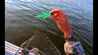 Рыбалка на судака на Днепре Судак на джиг Ловля судака летом
