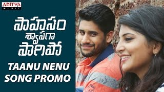 Download Hindi Video Songs - AR Rahman | Taanu Nenu Song Promo | Saahasam Swaasaga Saagipo | NagaChaitanya, GauthamMenon