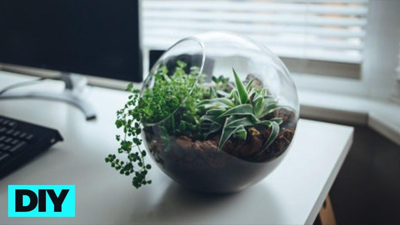 Cara Membuat Terrarium Miniatur Ekosistem Kerajinan Bahan Keras